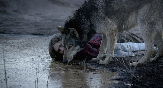 """""""Wild"""" © Heimatfilm"""