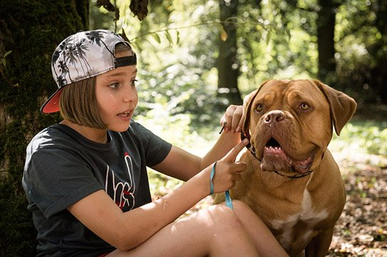 """Hanni & Nanni - Mehr als beste Freunde"", © Universal, UFA Fiction, S. Rabold"