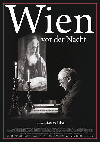 """""""Wien vor der Nacht"""", Quelle: Edition Salzgeber, DIF"""