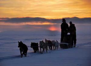 Die Familie mit den Schlittenhunden, Quelle: Real Fiction, DIF