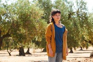 """""""Der Olivenbaum"""", Quelle: Piffl Medien, DIF, © Jose Haro, Piffl Medien"""