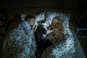 """""""Der Hund begraben"""", Quelle: Movienet Film, DIF, © Glory Film"""
